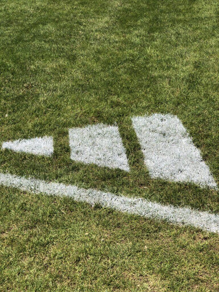 baseball-grass-adidas